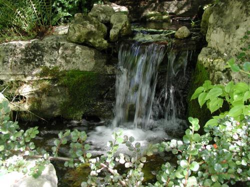 Integrating Water Features into the Landscape