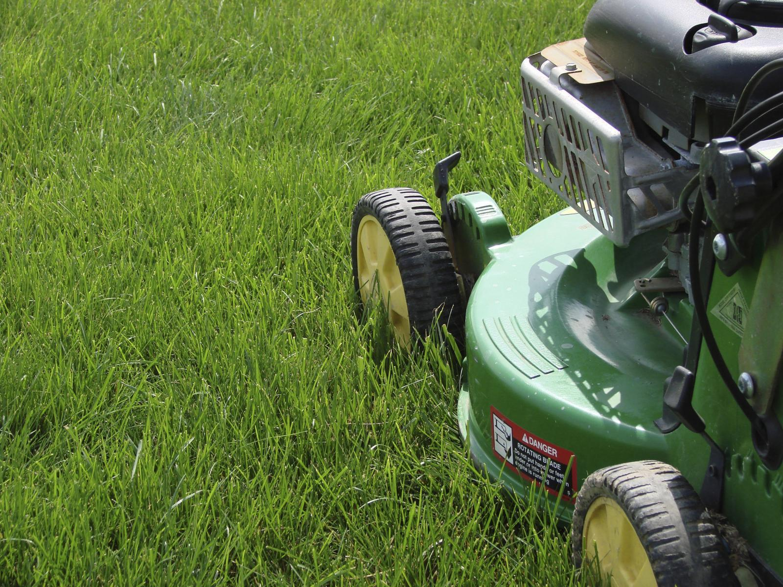 How to maintain a healthy lawn - Landscape Ontario