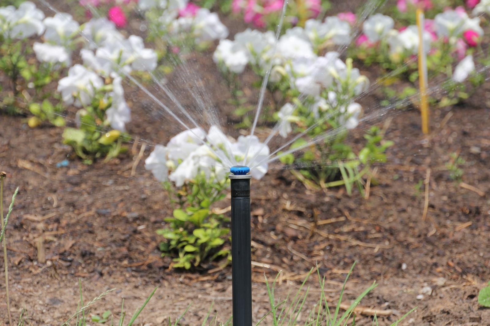 Smart Irrigation Month 2017