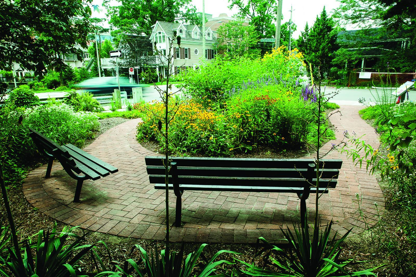 Member recognized for biodiversity garden