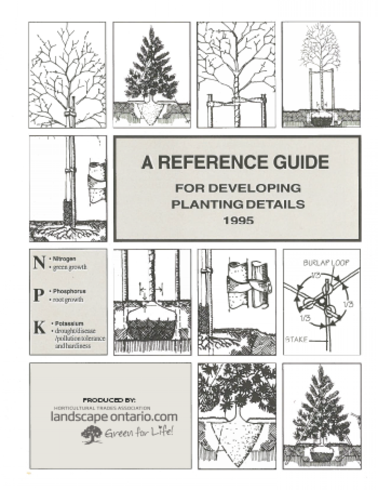 A Reference Guide for Developing Plant Ideas 1995