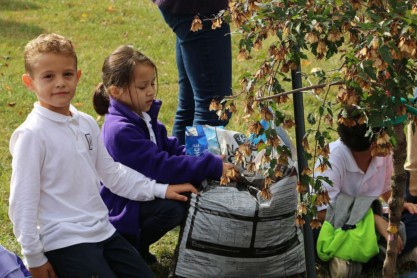 Students add mulch to one of 11 trees planted on the school grounds.