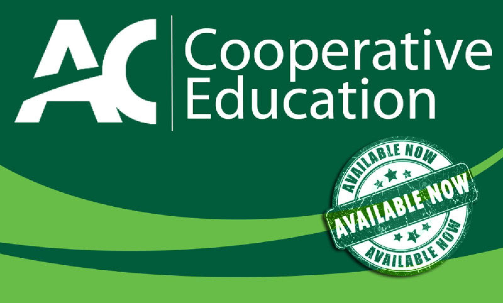 Algonquin College co-op students available for January 2019