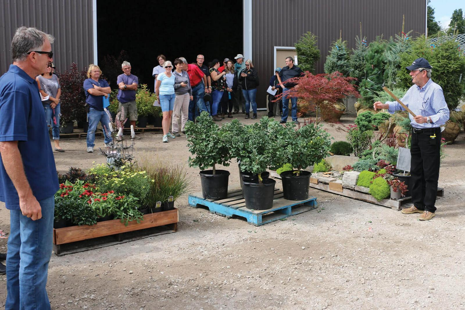 Over 250 skids of plant material were auctioned off at the 2018 growers Industry Auction.