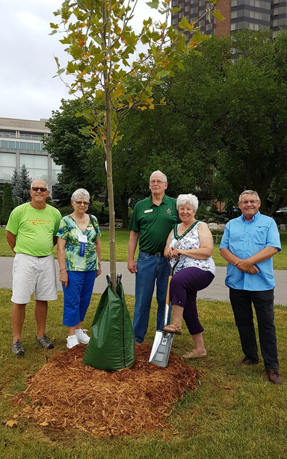 (L to R): Jay Terryberry, president LO Windsor Chapter; Margaret Laman, OHA District 10 Rep; Charles Freeman, OHA Vice President; Katherine Smyth, OHA President; at a tree planting to commemorate the 113th OHA convention.