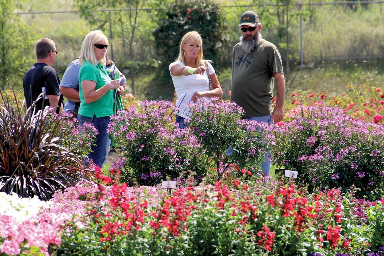 LO and University of Guelph host tours of trial gardens