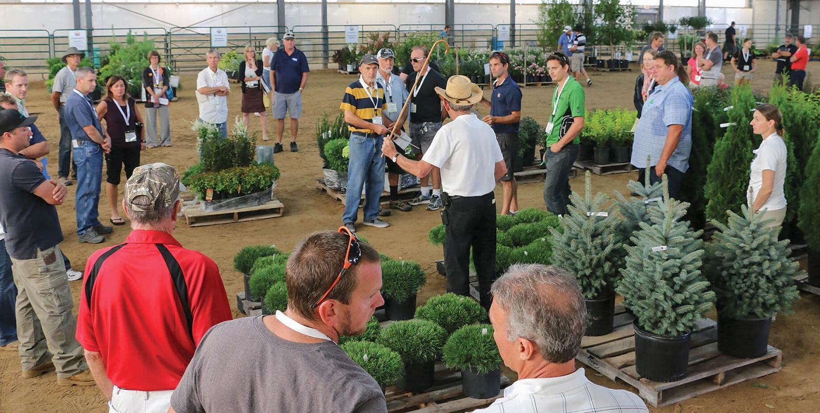 This year's Industry Auction, held as part of Thrive, offered great plant material at low prices.
