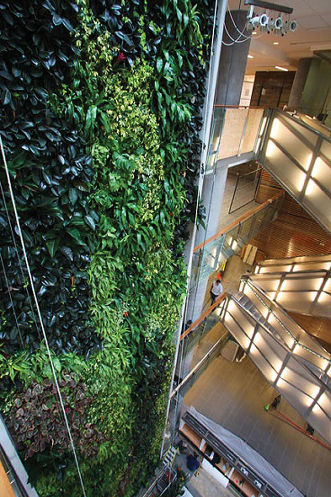Spectacular describes the living wall on the 15-storey Social Sciences building on the University of Ottawa campus.
