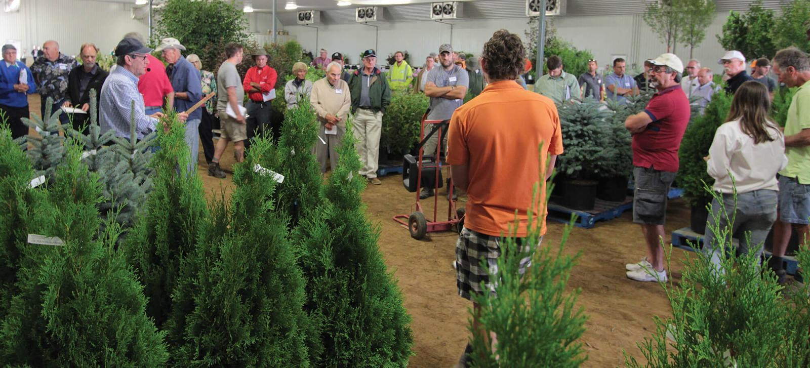This year's Industry Auction saw a good turnout at Winkelmolen Nursery in Lynden.