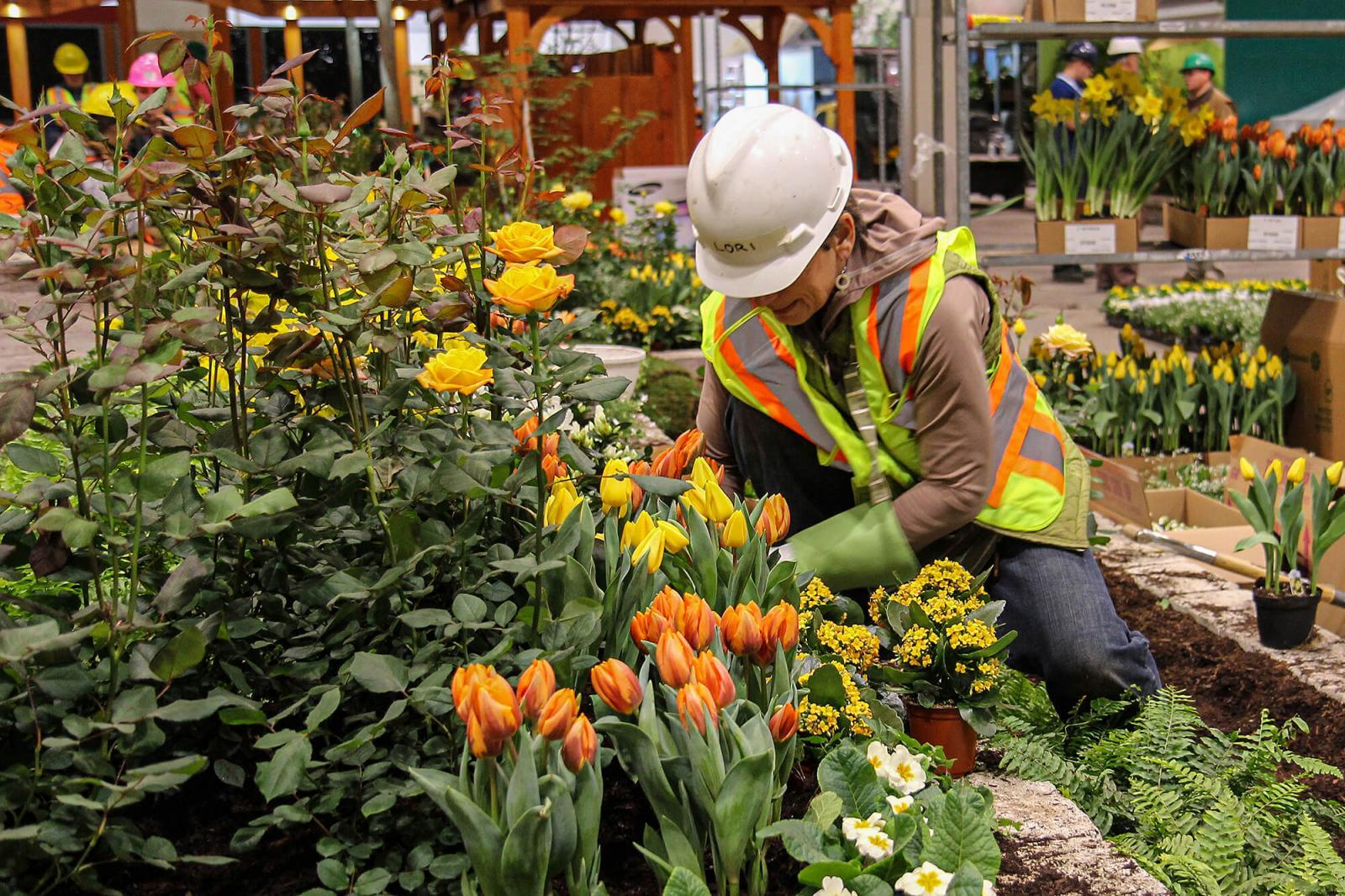 Like-minded professionals build LO's Canada Blooms garden.