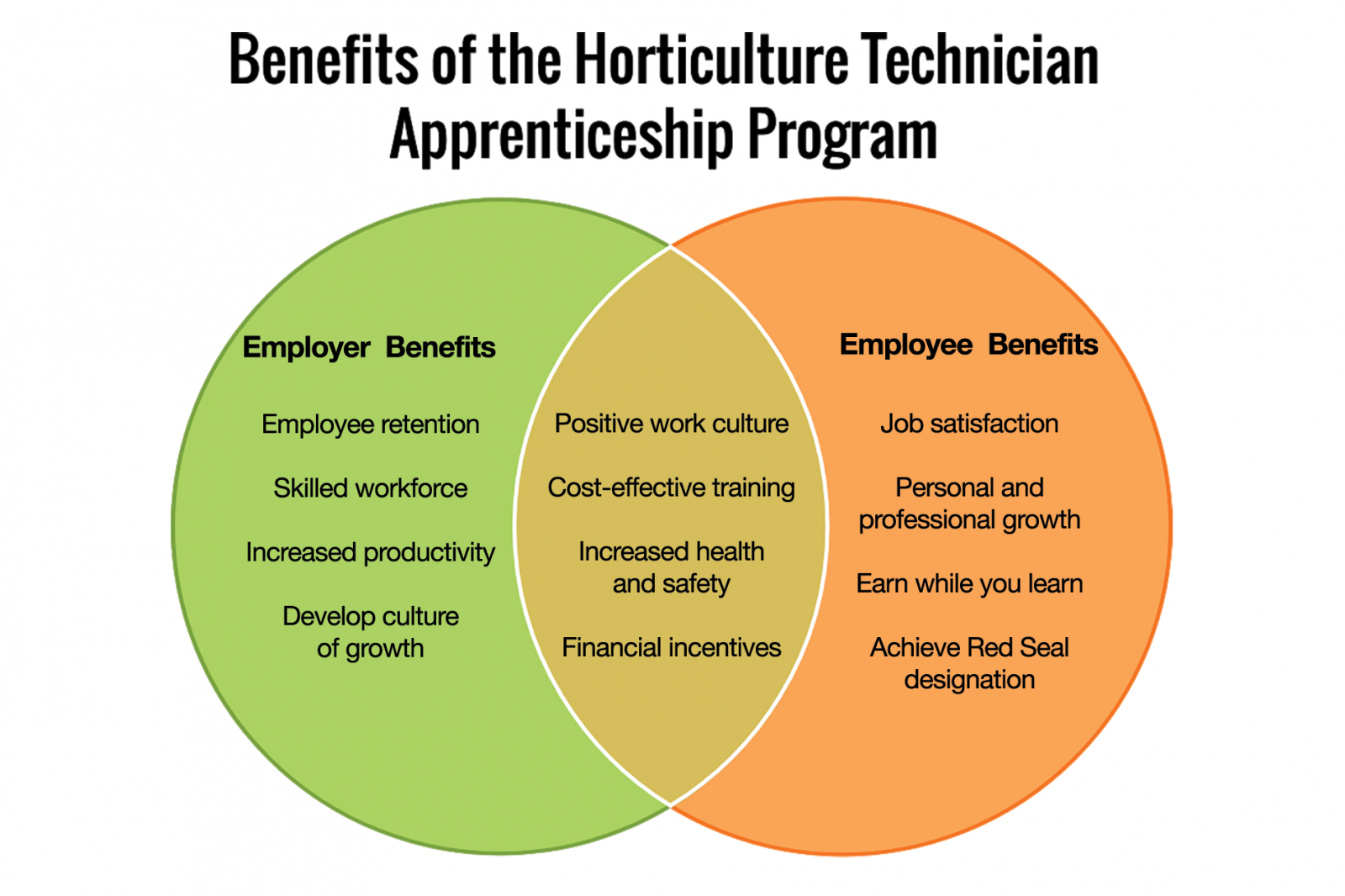 Inspire and invest in your employees through Apprenticeship