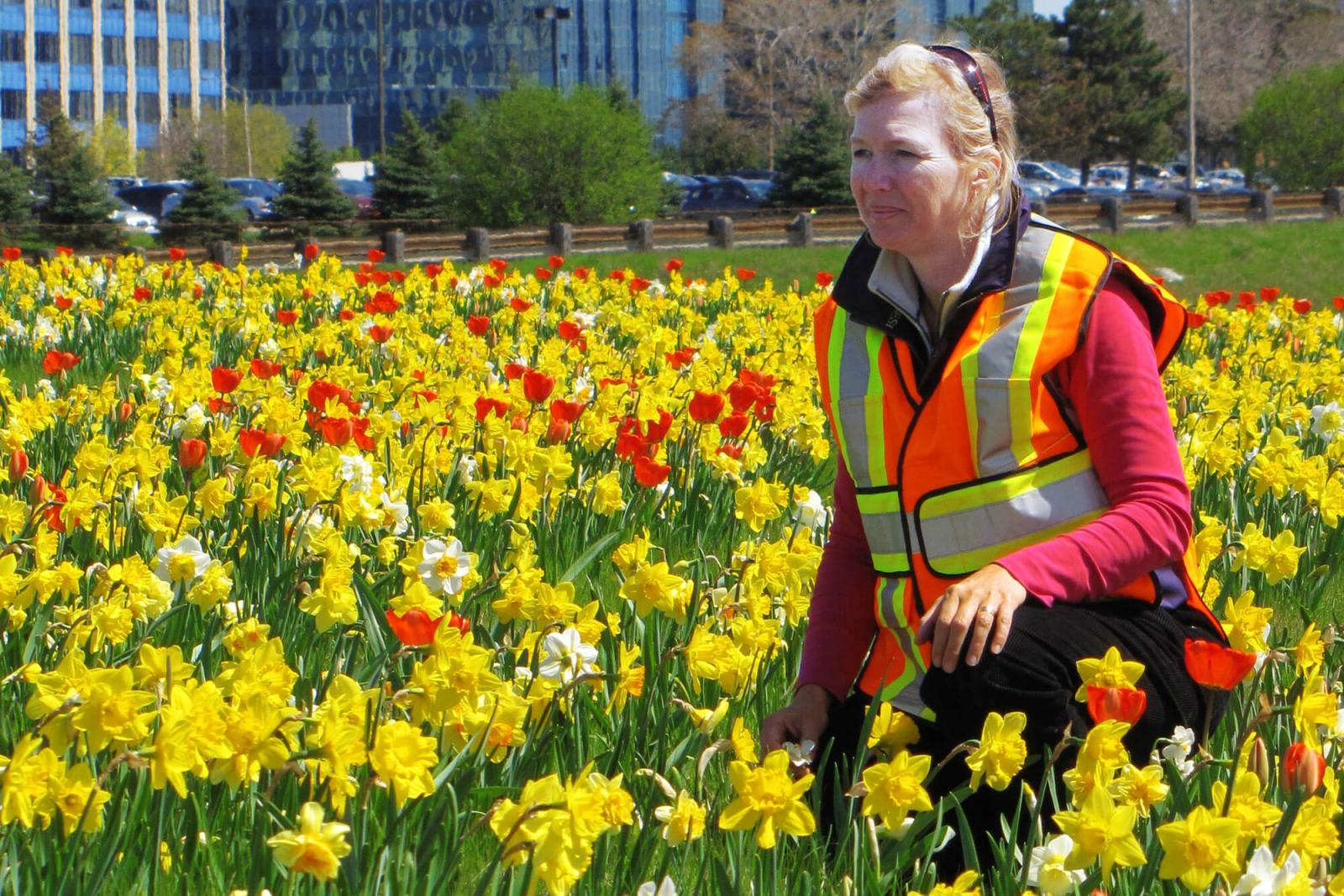 Caroline de Vries takes on the task of planting spring flowers beside busy highways.
