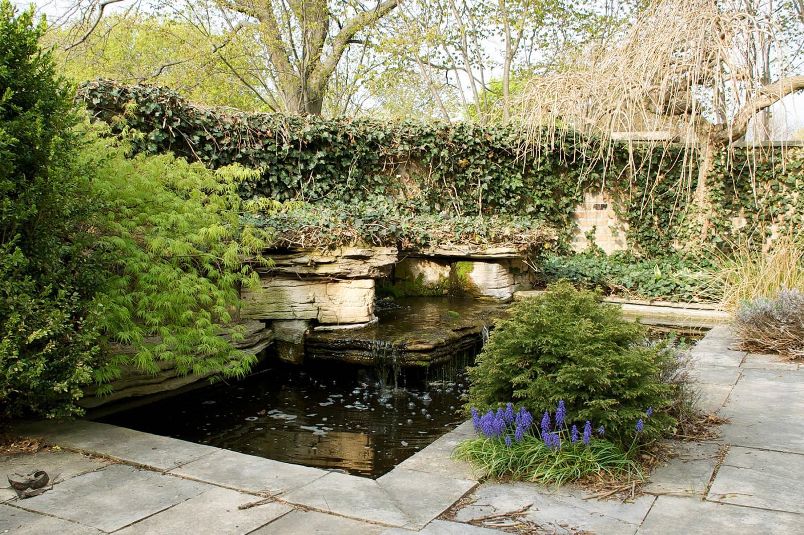 Cuddy Gardens was recently granted botanical gardens status.