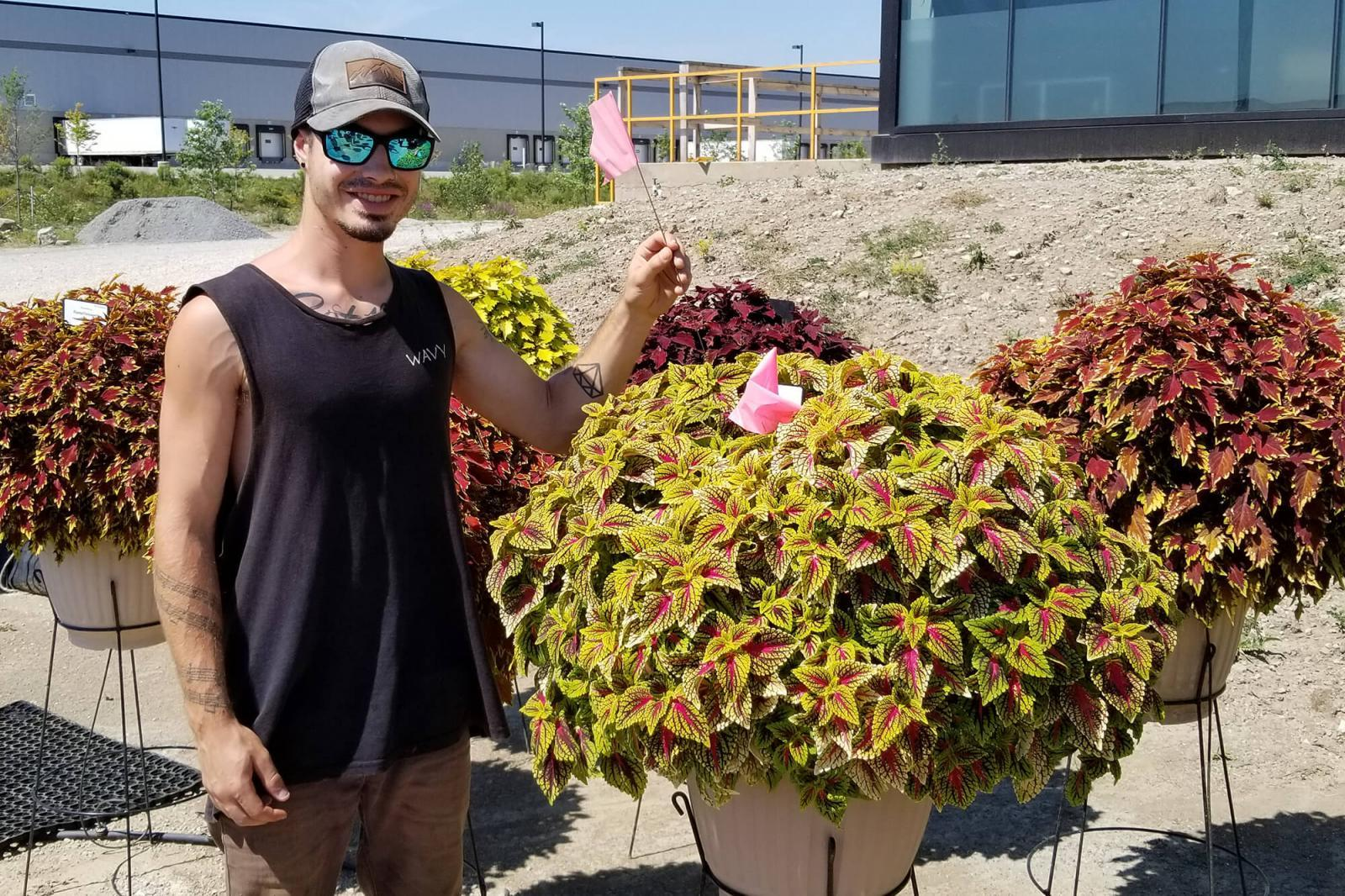 Davis Anders casts a vote for his favourite new plant at the University of Guelph's Trial Garden site at Landscape Ontario in Milton, Ont.