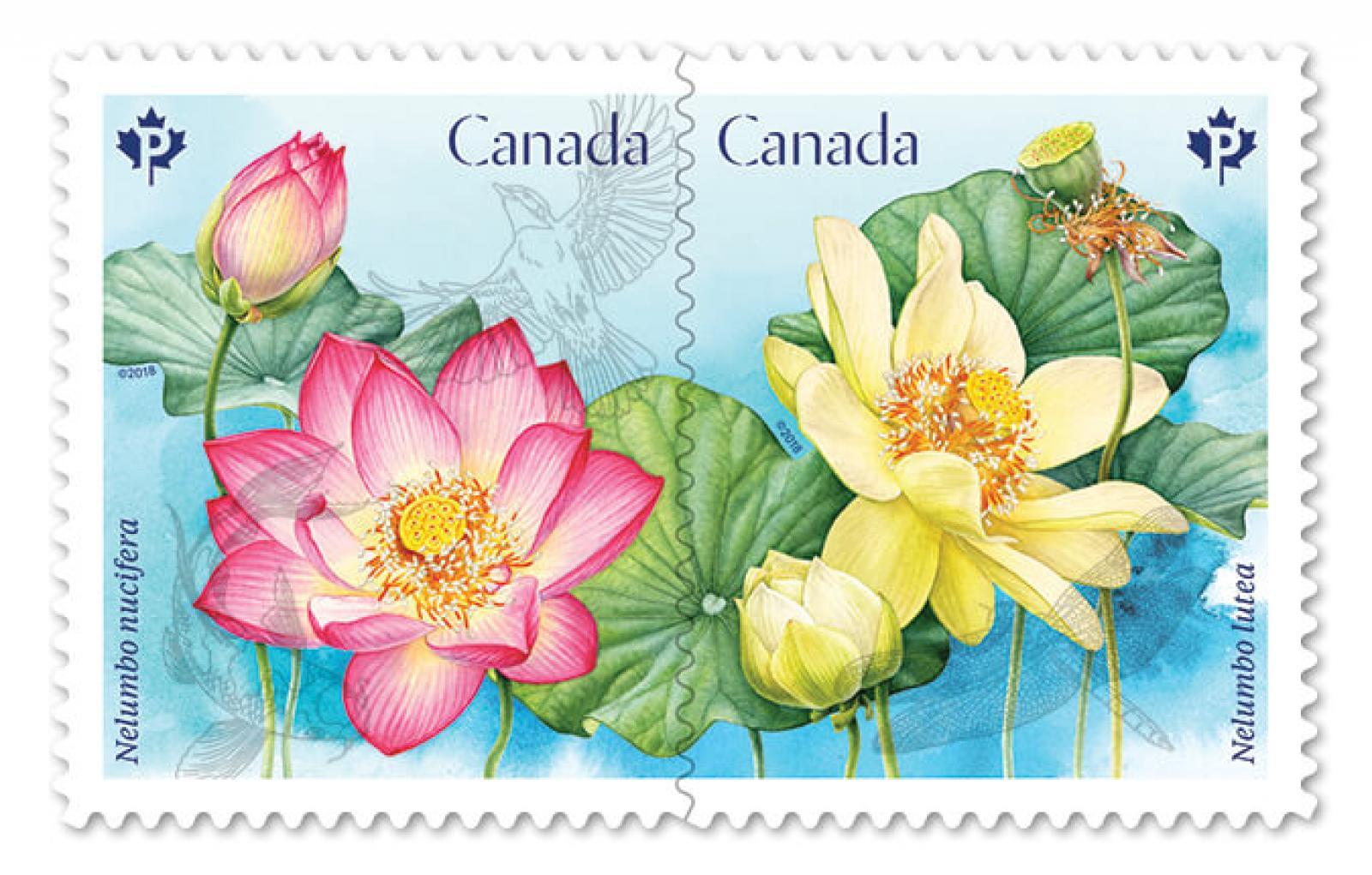 Canada Post launches flower stamp