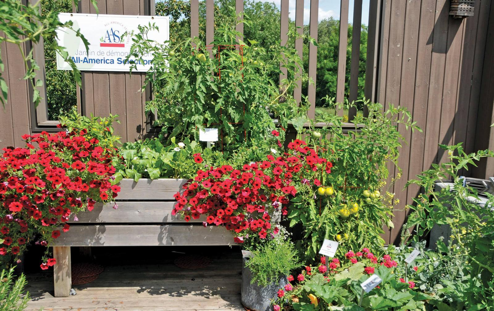 Canadian gardens feted by AAS