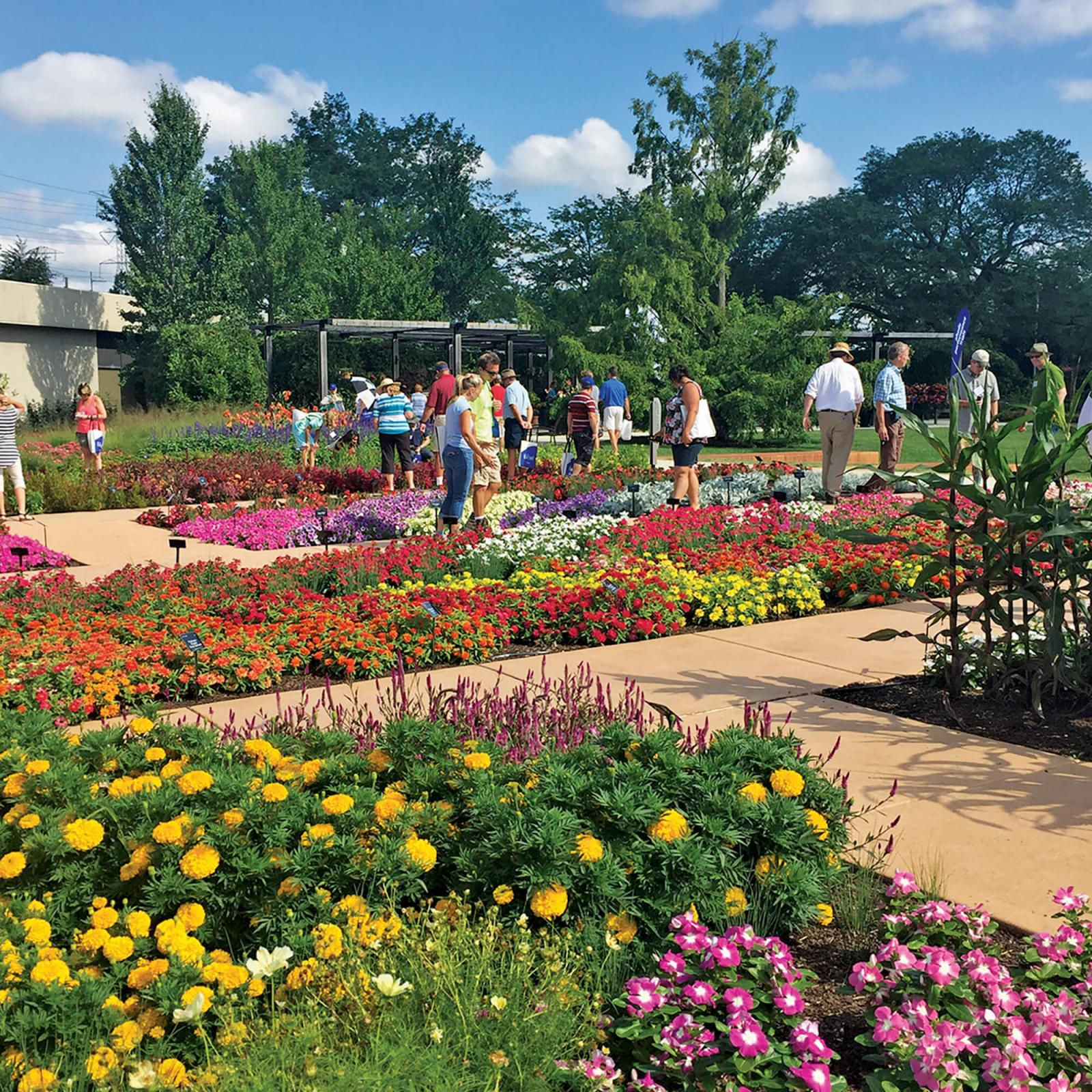 Ball Seed's Field Day and Landscape Day provides attendees the opportunity to view trial gardens for new plants and meet and learn from industry experts.