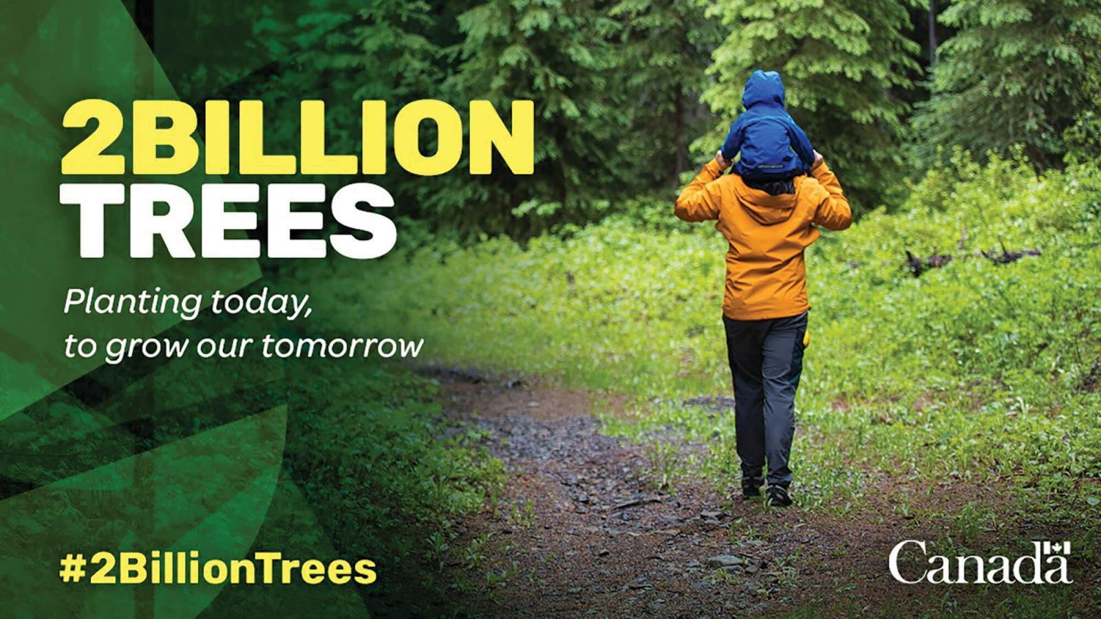 Feds promise to plant 2 billion trees