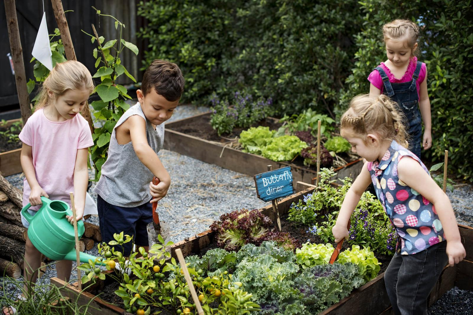 Top four benefits of raised garden beds