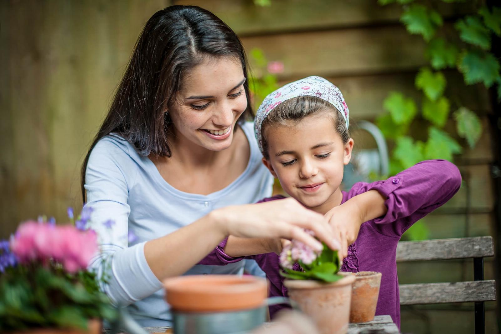 Picking the perfect potting soil