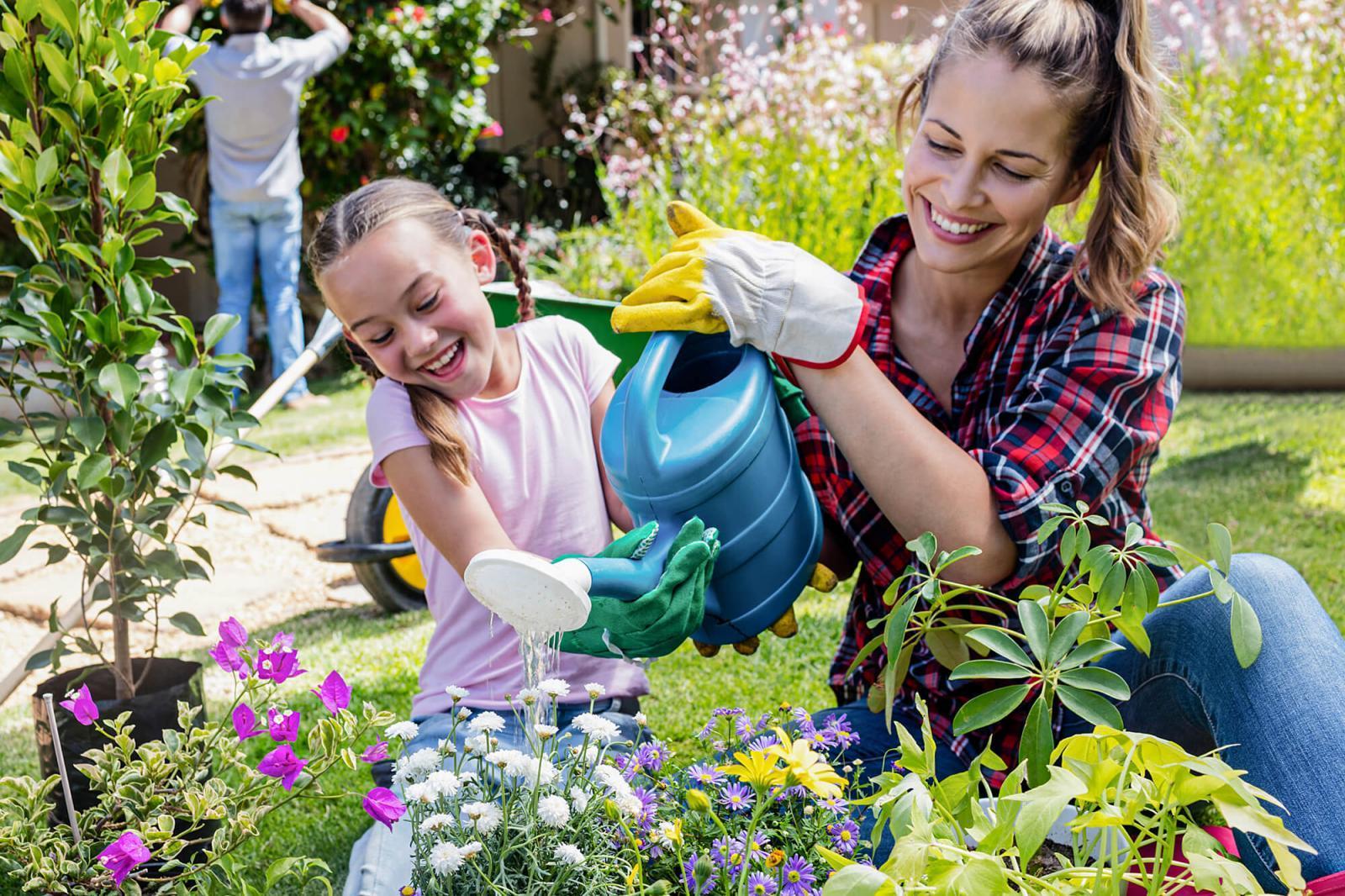 Help your garden to beat the heat