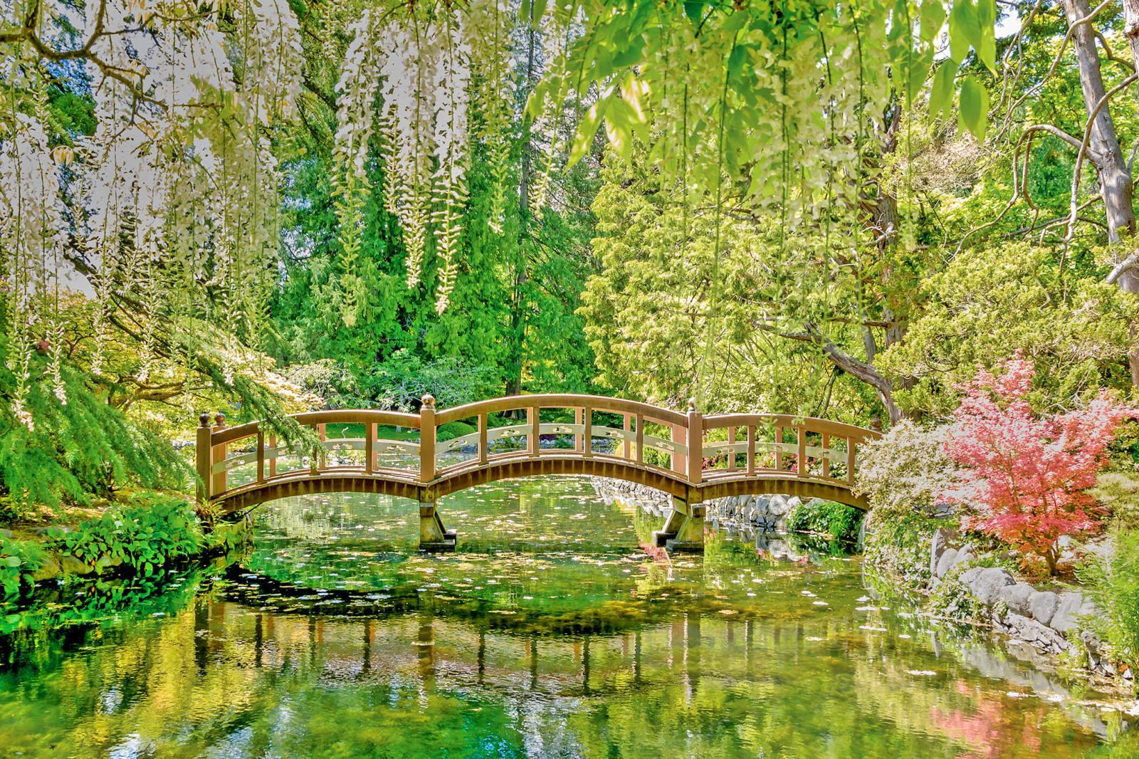 A Japanese garden bridge connects some of the more than 15 km of trails in Hatley Gardens.